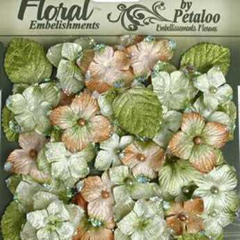 Petaloo Chantilly Velvet Hydrangeas rose